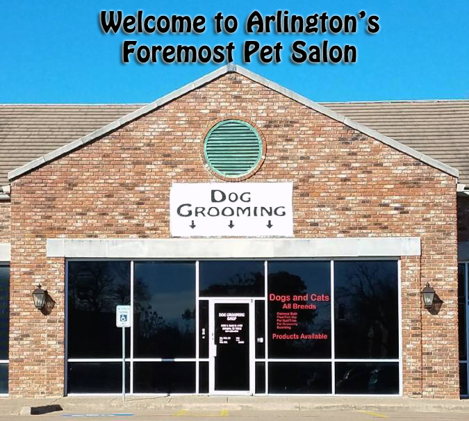 Arlington Dog Grooming Services